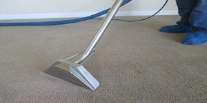 best north carolina carpet cleaners